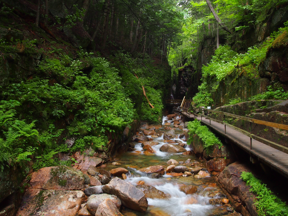 The Flume, White Mountains