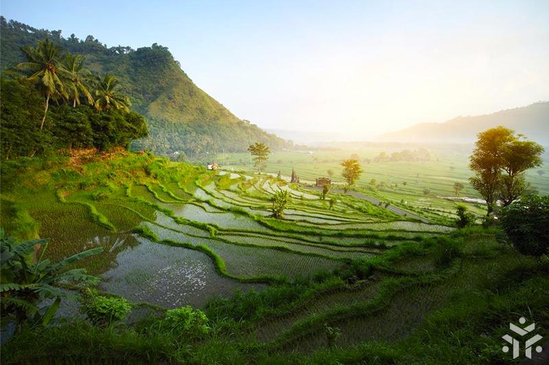 Indonesia-landscape